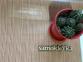 Самоклейка Hongda (Тёмное дерево) 67,5см х 15м H5008 3