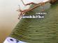 Самоклейка Hongda (Бамбук) 67,5см х 1м H5042 5