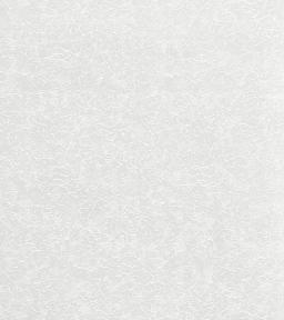 Обои 0037300 белый (0,53м × 10,05м=5,3м²)