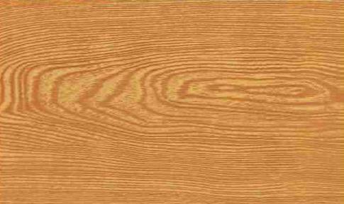 Самоклейка Hongda (Среднее дерево) 90см х 15м H5001