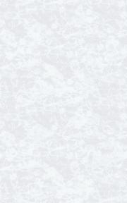 Самоклейка D-C-Fix (Цветы) 45см х 1м Df 216-0024