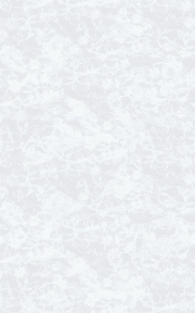 Самоклейка D-C-Fix (Цветы) 67,5см х 1м Df 216-8024