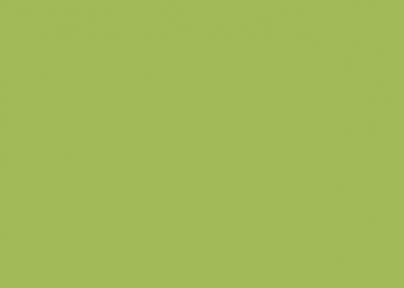 Самоклейка Hongda (Фисташка) 45см х 15м H2027