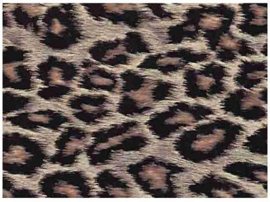 Самоклейка Hongda (Хищник) 67,5см х 15м H5103