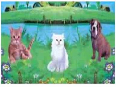 Самоклейка Hongda (Домашние животные) 45см х 15м H9011