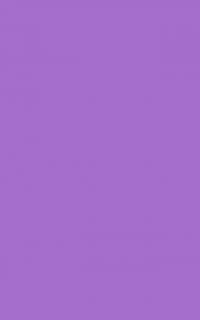 Самоклейка D-C-Fix (Фиолетовая) 45см х 15м Df 200-3193