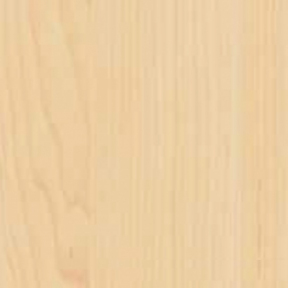Самоклейка Gekkofix (Клён светлый) 45см х 15м 10155