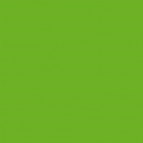 Самоклейка Gekkofix (Травяная) 45см х 15м 13494