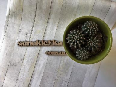Самоклейка Gekkofix (Деревянная доска) 67,5см х 15м 13522