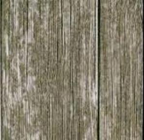 Самоклейка Gekkofix (Селькое дерево) 90см х 15м 11627