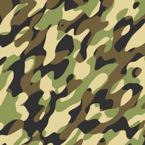 Самоклейка Patifix (Зеленый камуфляж) 45см х 15м 15-6305