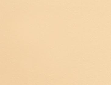 Самоклейка Patifix (Бежевая) 45см х 15м 10-1355