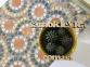 Самоклейка D-C-Fix (Коричневый камень) 45см х 15м Df 200-3126