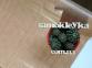 Самоклейка Hongda (Тёмное дерево) 45см х 1м H5008