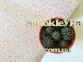 Самоклейка Patifix (Анютины глазки) 45см х 15м 15-6830